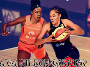 A'ja Wilson Career